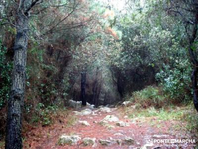 Reserva de la Biosfera Urdaibai - San Juan de Gaztelugatxe;senderismo nocturno sendero rio verde